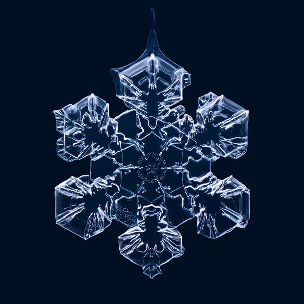 Gorgeous Macro Photographs of Snowflakes by Matthias Lenke snow macro ice