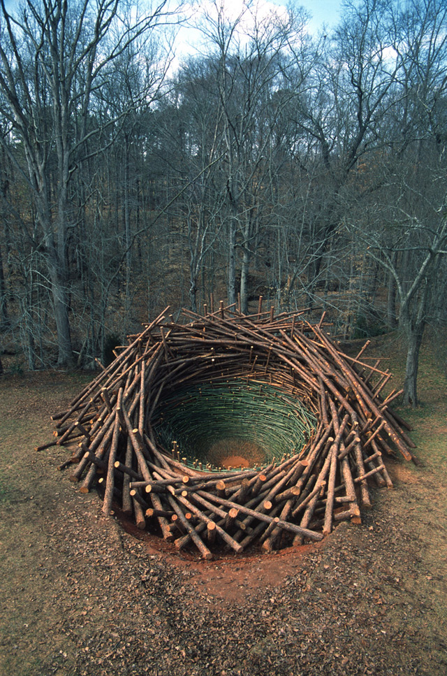An 80 Ton Birds Nest Built at the Clemson University Botanical Gardens sculpture nests installation birds