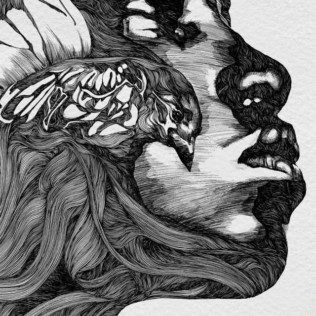 Illustrations by Gabriel Moreno | Colossal