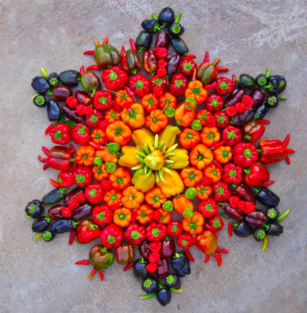 Flower Mandalas @ Beautiful Shayari plants land art flowers