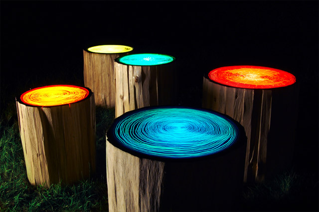 Tree Ring Lights by Judson Beaumont