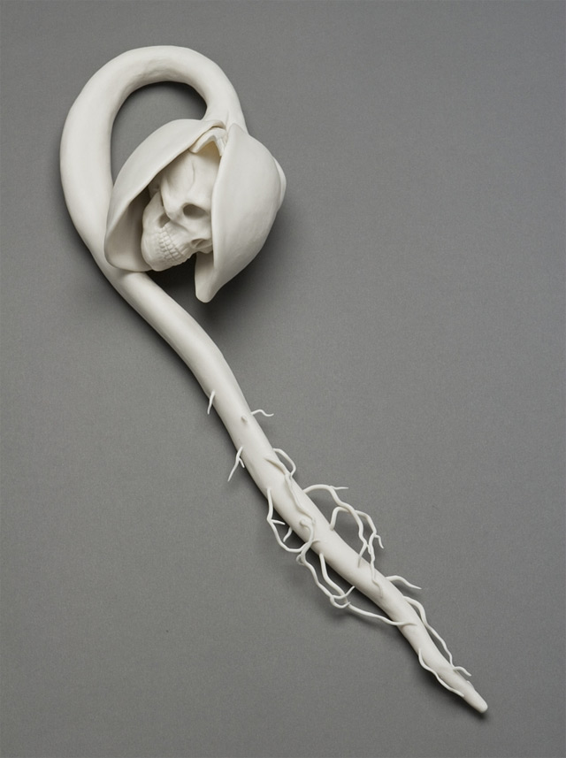 The Porcelain Sculptures of Kate McDowell sculpture porcelain environment ceramics birds anatomy