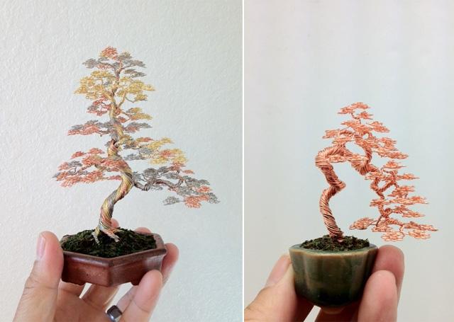 bonsai-5