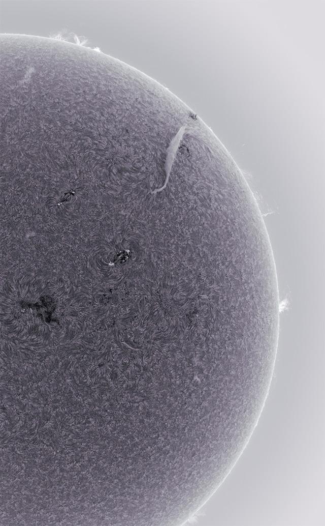 sun-8