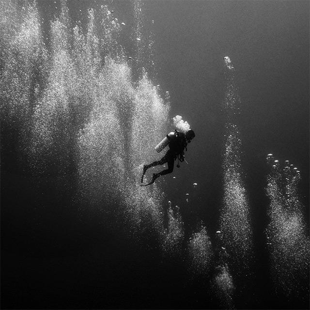 black and white underwater photography by hengki koentjoro colossal