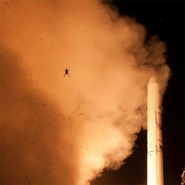 One Giant Leap: Frog Photobombs NASA Spacecraft Launch Photo