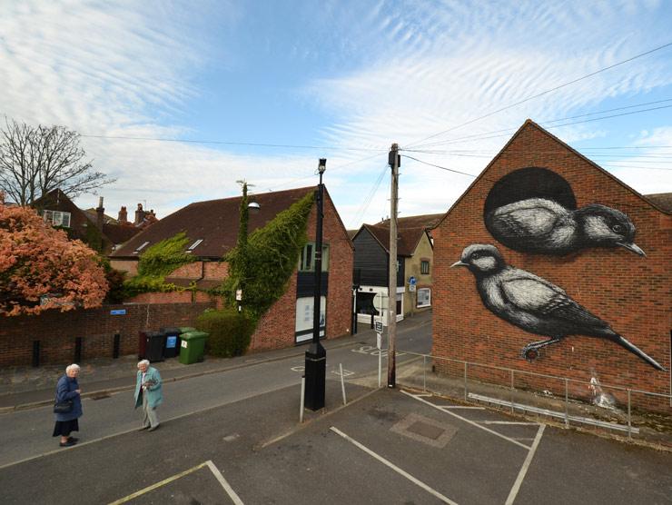 brooklyn-street-art-roa-2013-London-chichester-web-4