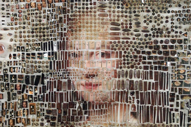 Dutch Paintings Recreated Using Thousands of Photographic and Scientific Specimens