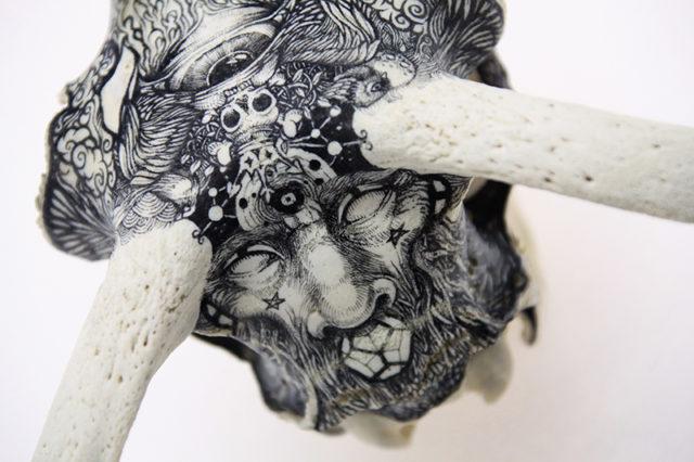 Stones & Bones: Illustrations on Rocks and Skulls by DZO