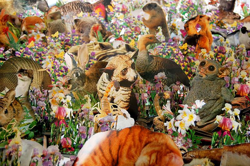 Flora And Fauna Escape The Confines Of Over 1 000 Repurposed Books