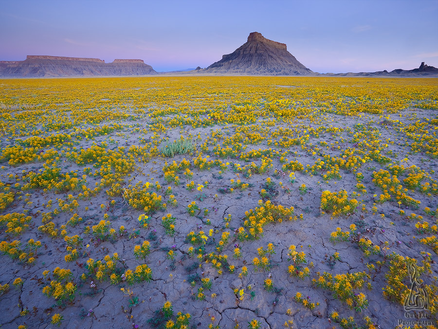 Good Badlands: Dry Terrain of the American West Captured in a Brief Moment of Color by Guy Tal | Colossal