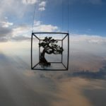 Makoto Azuma Uses the Stratosphere as a Backdrop For His Latest Floral Art