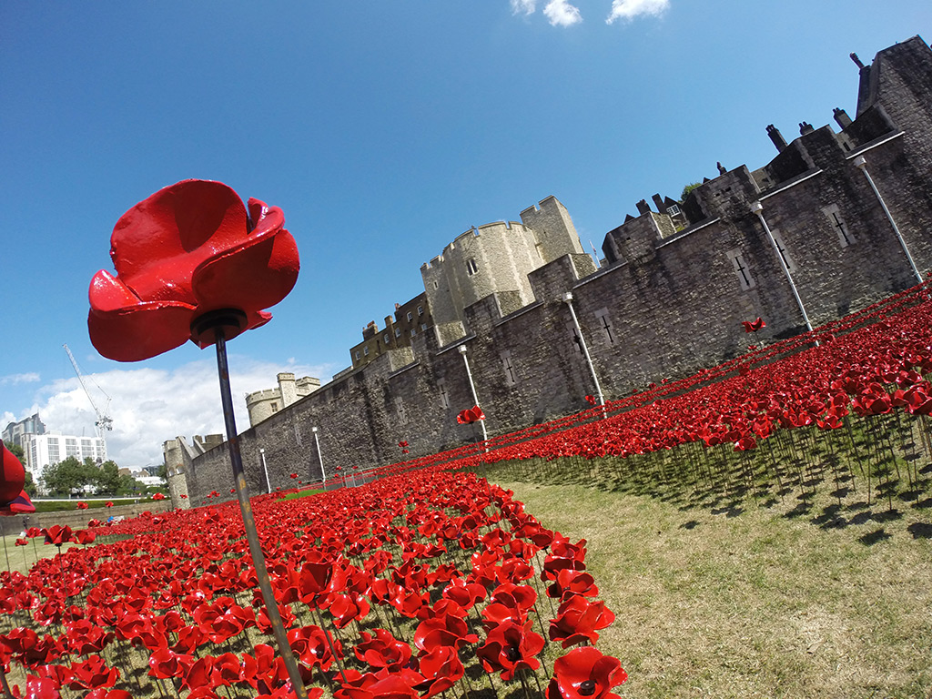 888 246 Ceramic Poppies Surround The Tower Of London To