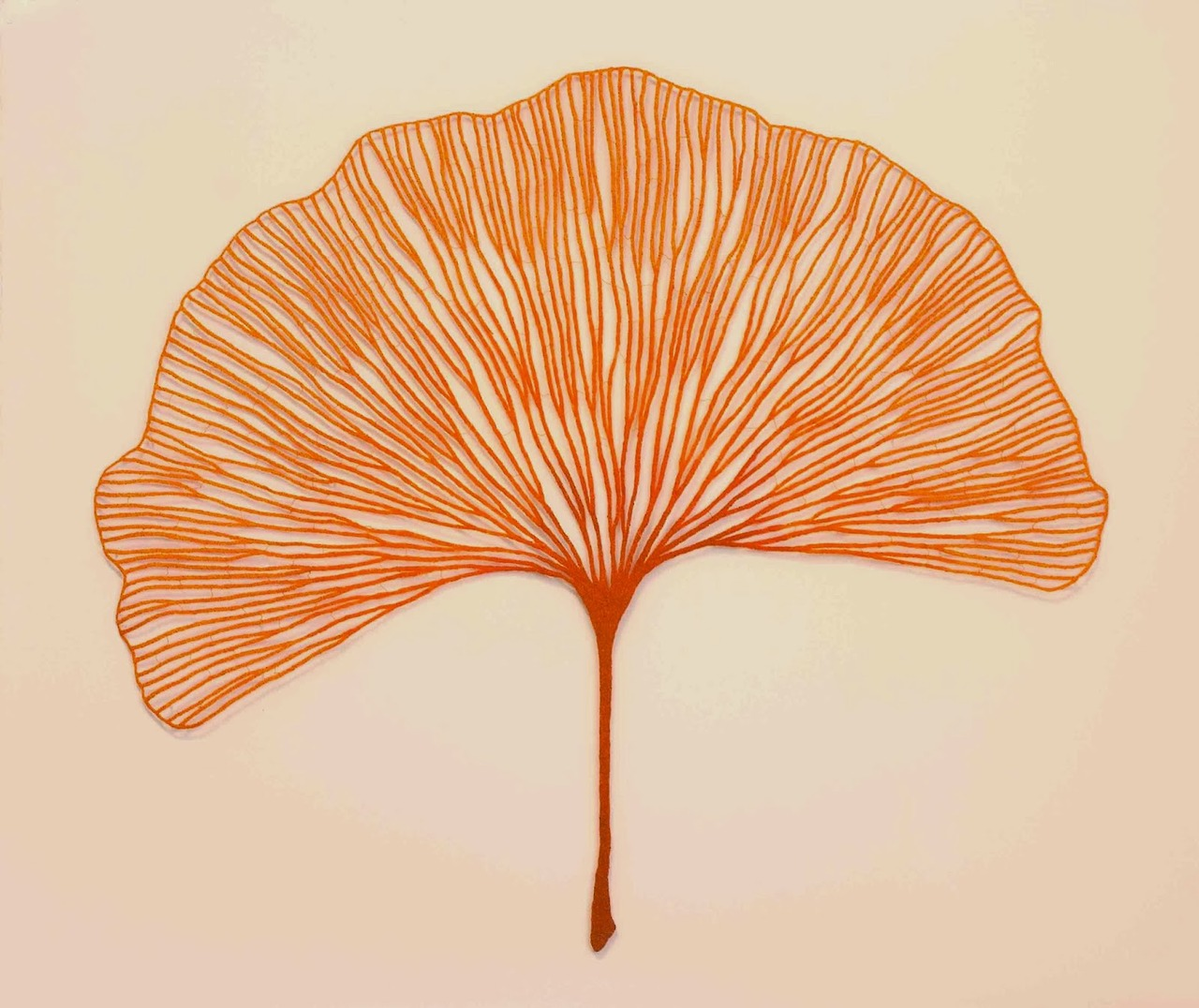 meredith woolnough (3)