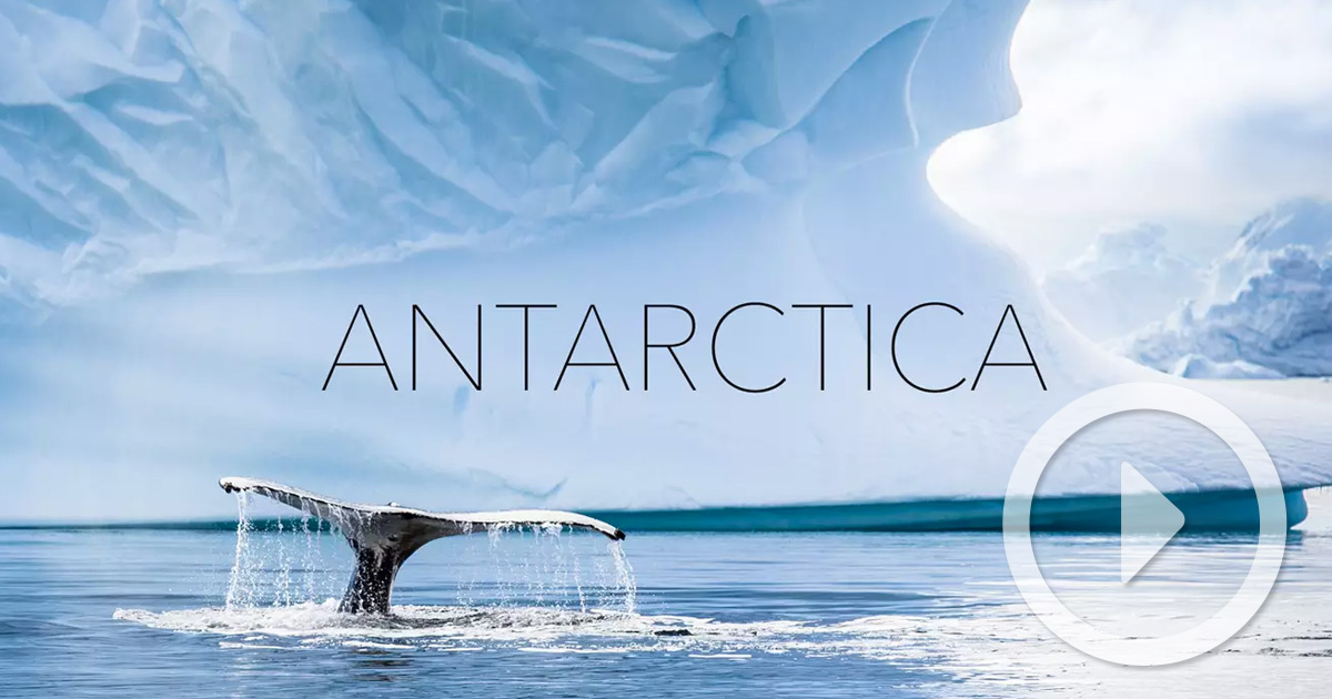 magnificent aerial footage of antarctica shot by kalle