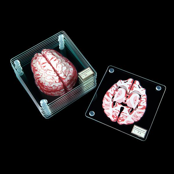 brains2