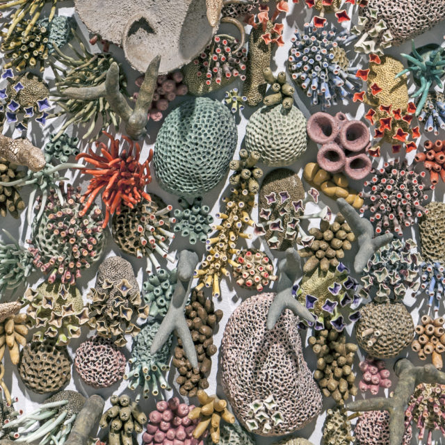 Ceramic Coral Reefs by Courtney Mattison Draw Attention to Earth's Changing Oceans