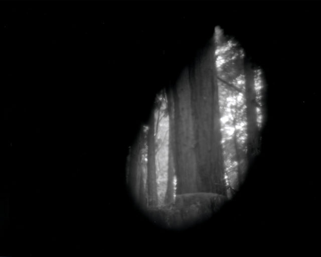 Site-Specific Pinhole Cameras Constructed From Nature Capture the Pacific Northwest