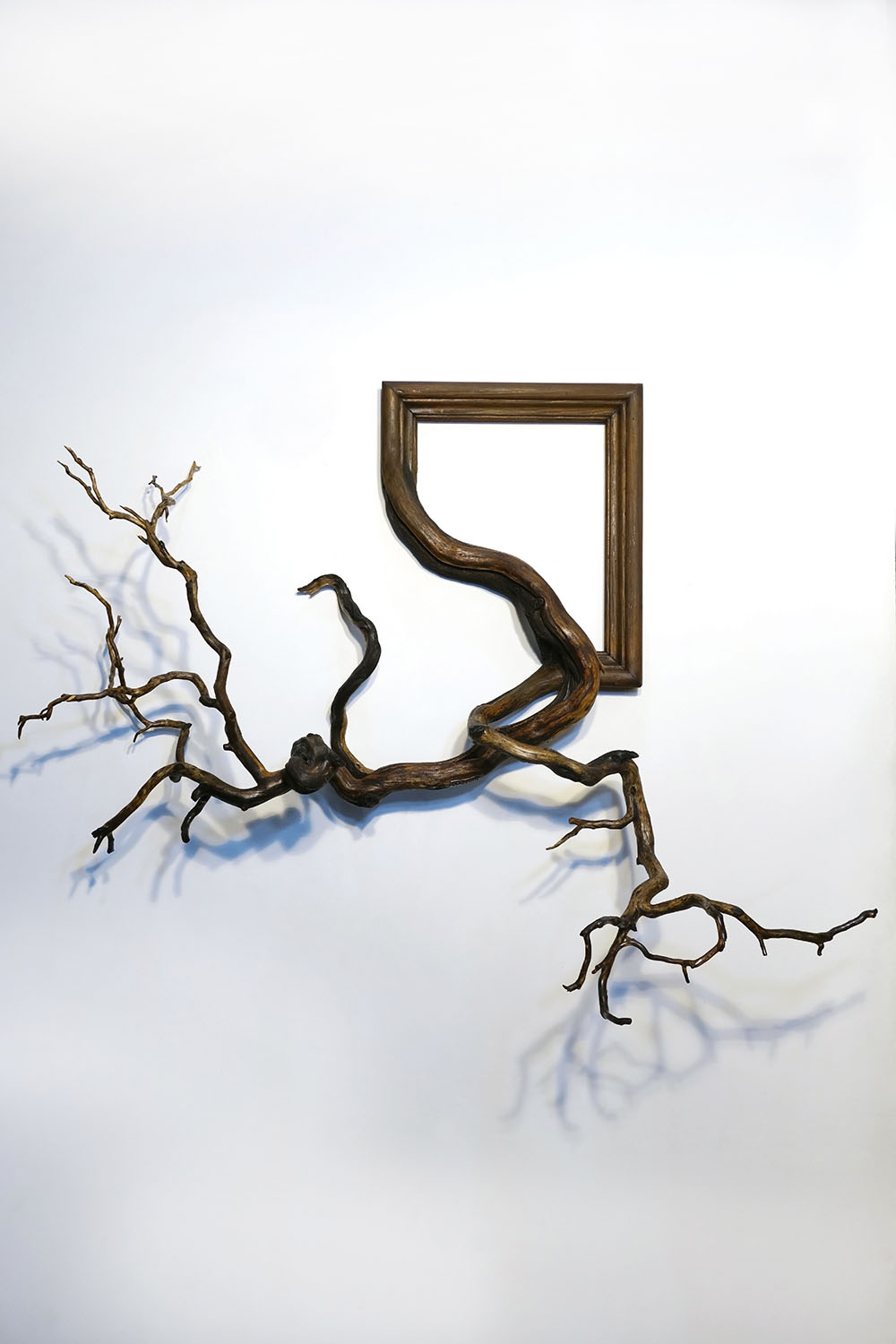 New Fusion Frames By Darryl Cox Fuse Gnarled Tree Roots