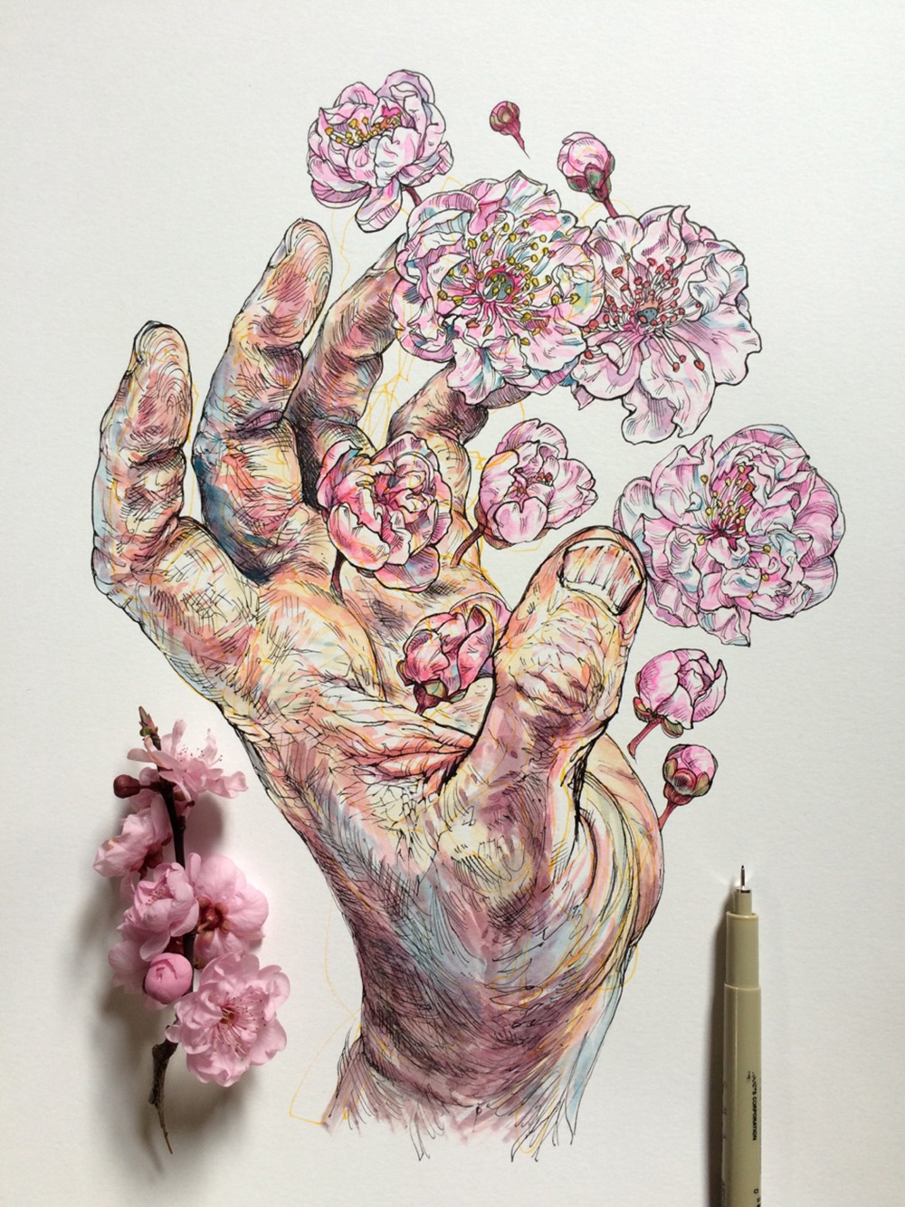 Hand Painted Paper