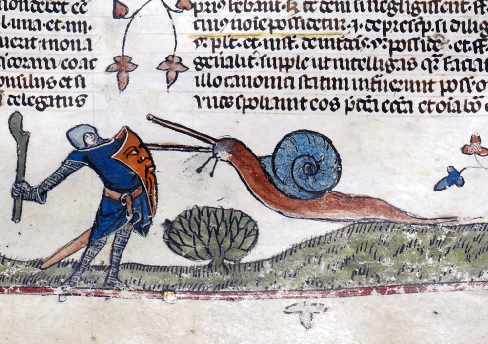 Image result for image of knights fighting snails