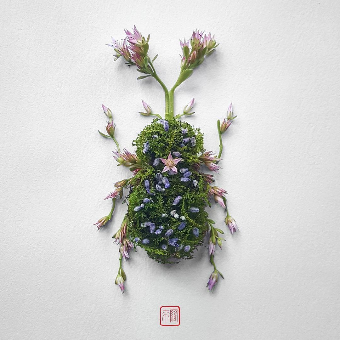 Pics Of Flower Arrangements insect flower arrangementsraku inoue | colossal