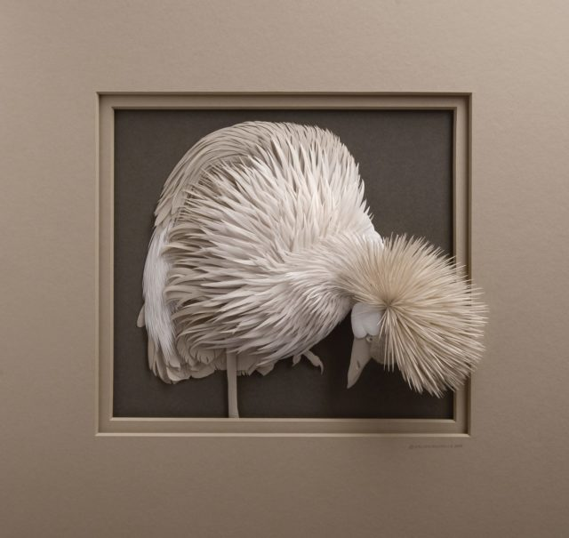 Haut-Relief Portraits of Animals Come Alive in Detailed Paper Sculptures by Calvin Nicholls