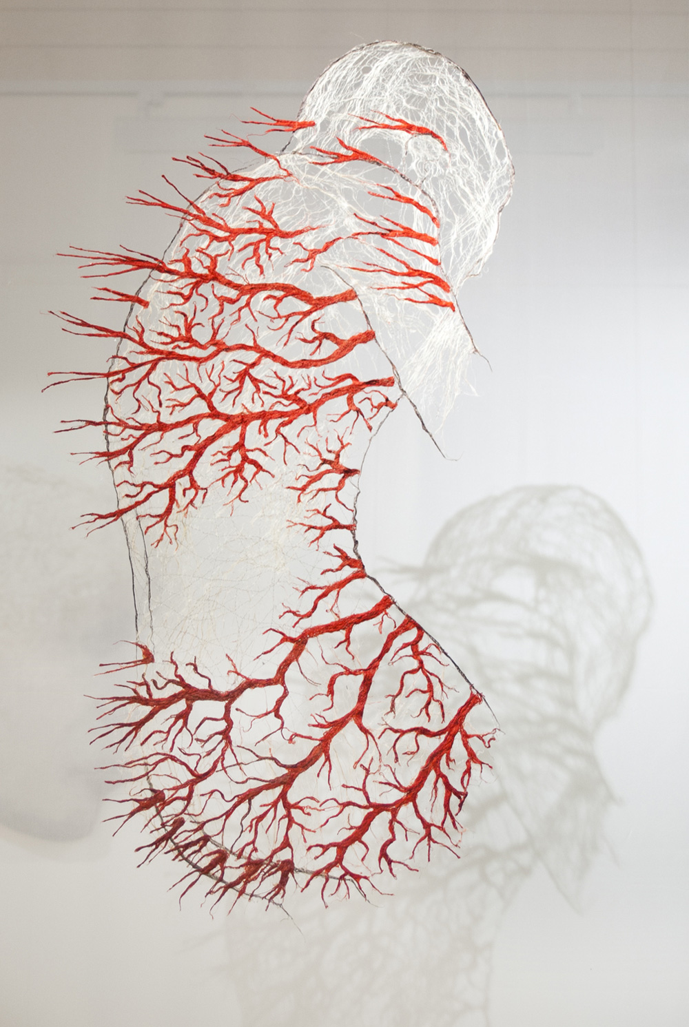 Textile Bodies Reveal Branched Systems Of Veins Flowers
