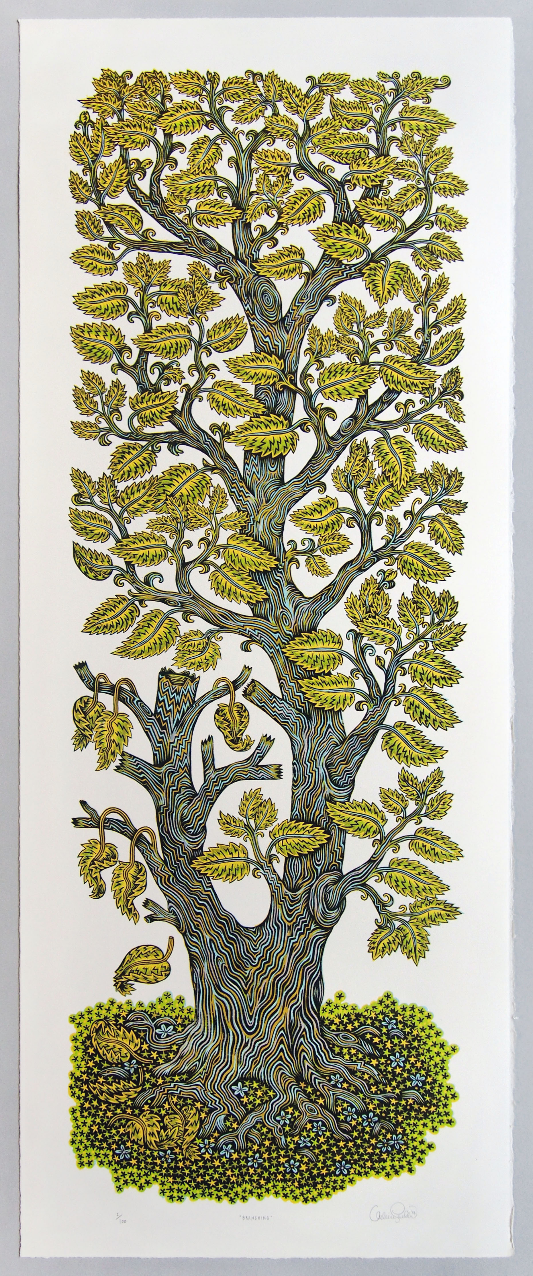 A Tall Leafy Tree Grows In Tugboat Printshop S New 4 Color
