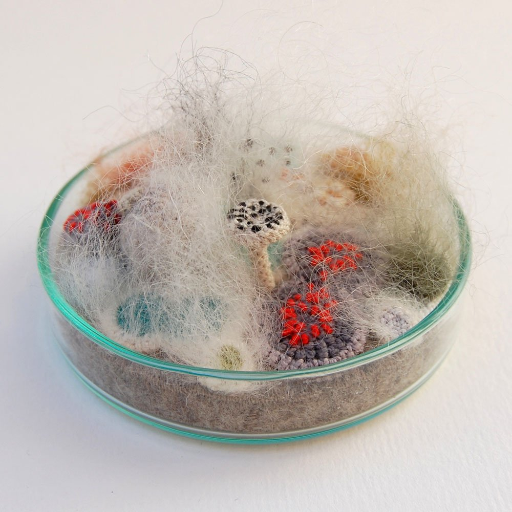 Crocheted And Embroidered Bacteria Grow In Elin Thomas S