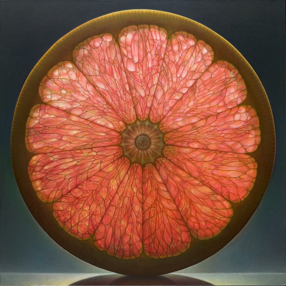 Luminous Portraits of Sliced Fruit Glow Like Stained Glass Windows | Colossal