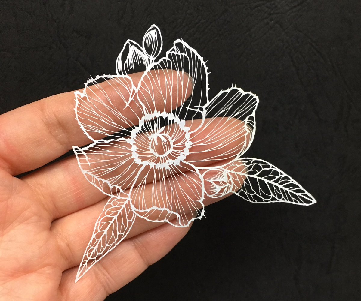 Complex cuts form new detailed paper sea creatures flowers and more recently fukuda has been working on smaller scale creations and experimenting with holographic paper you can stay up to date with new work by mightylinksfo