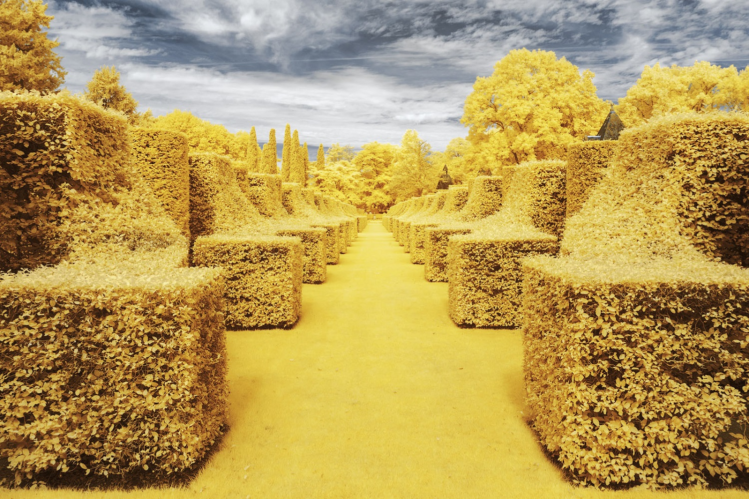 Infrared Photographs by Pierre-Louis Ferrer Capture French Landscapes in Bright Yellow Hues