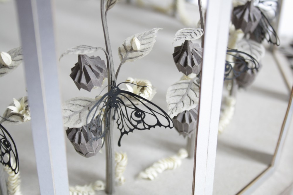 Cut Paper Zoetrope Reveals the Life Cycle of a Butterfly as it Rotates