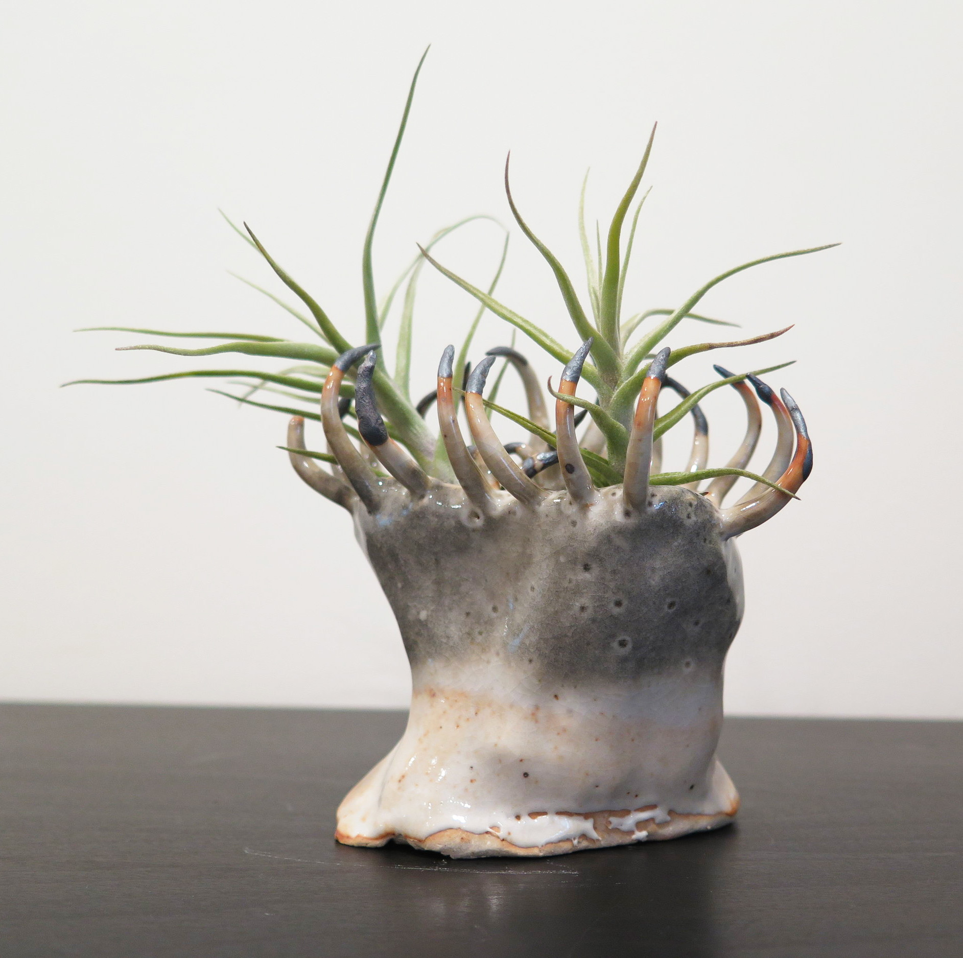 Claws and Teeth Emerge From Otherworldly Ceramic Vessels by Gregory