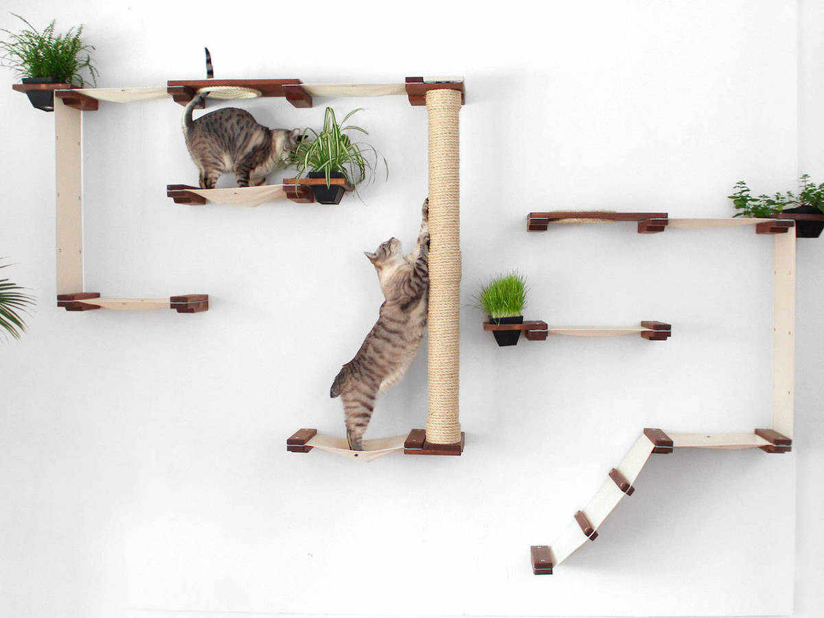 Minimalist Modular Systems Turn Walls Into Feline Playgrounds Colossal