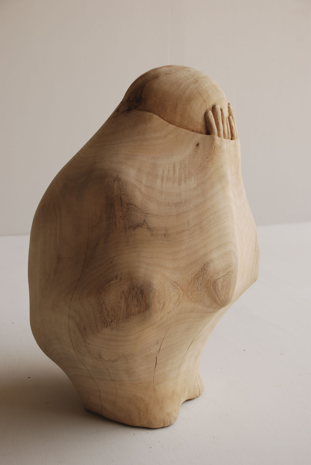 Objects and Figures Trapped Within Carved Wood Sculptures by Tung ...