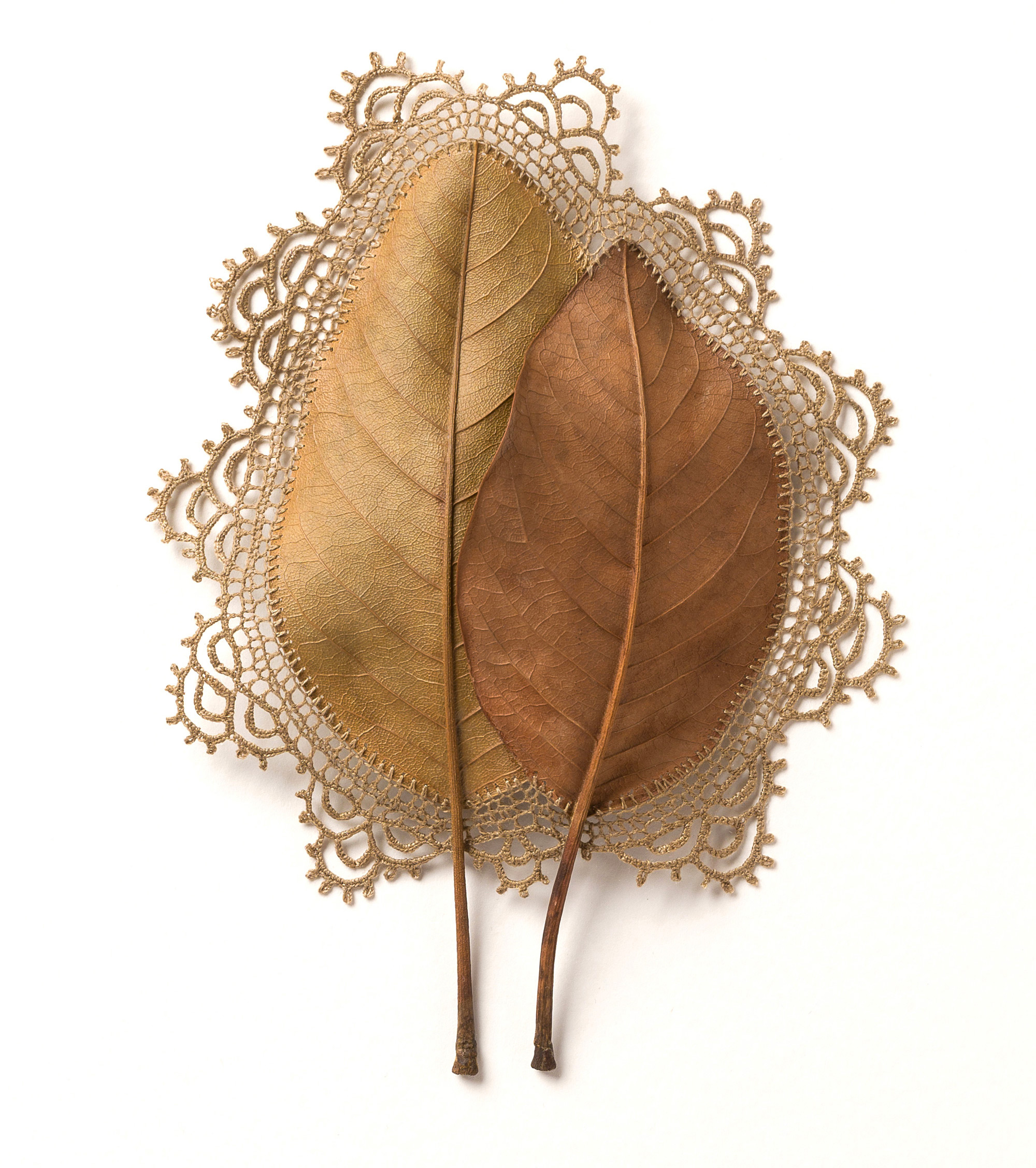 Found Leaves  with Delicate Crochet Embellishments by Susanna Bauer | Colossal