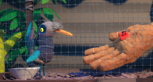 Stop-Motion Animation Shows a Bird's POV of the Exotic Pet Industry