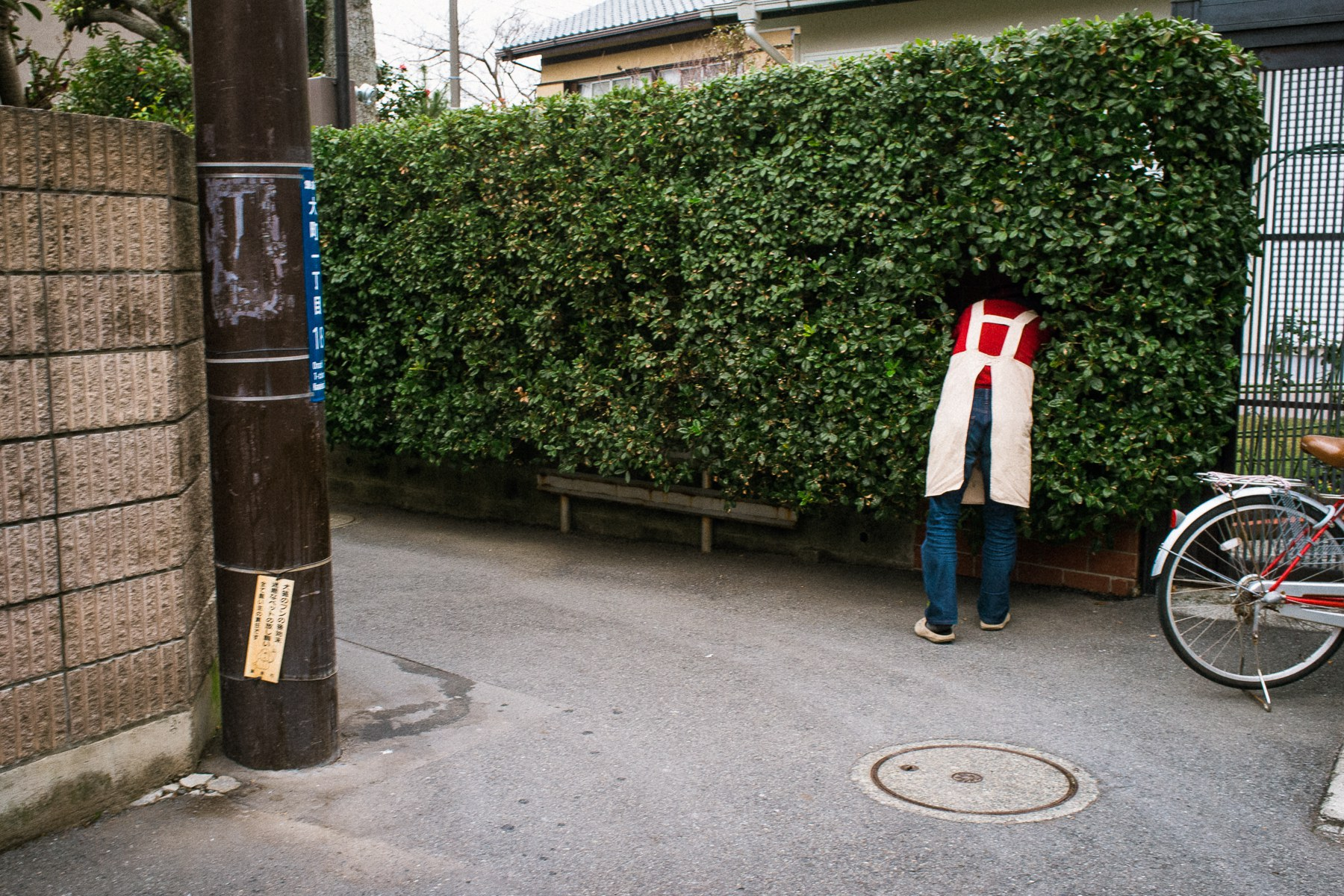 Quirky Juxtapositions Capture Imperfect Human Moments in Photographs by Shin Noguchi | Colossal