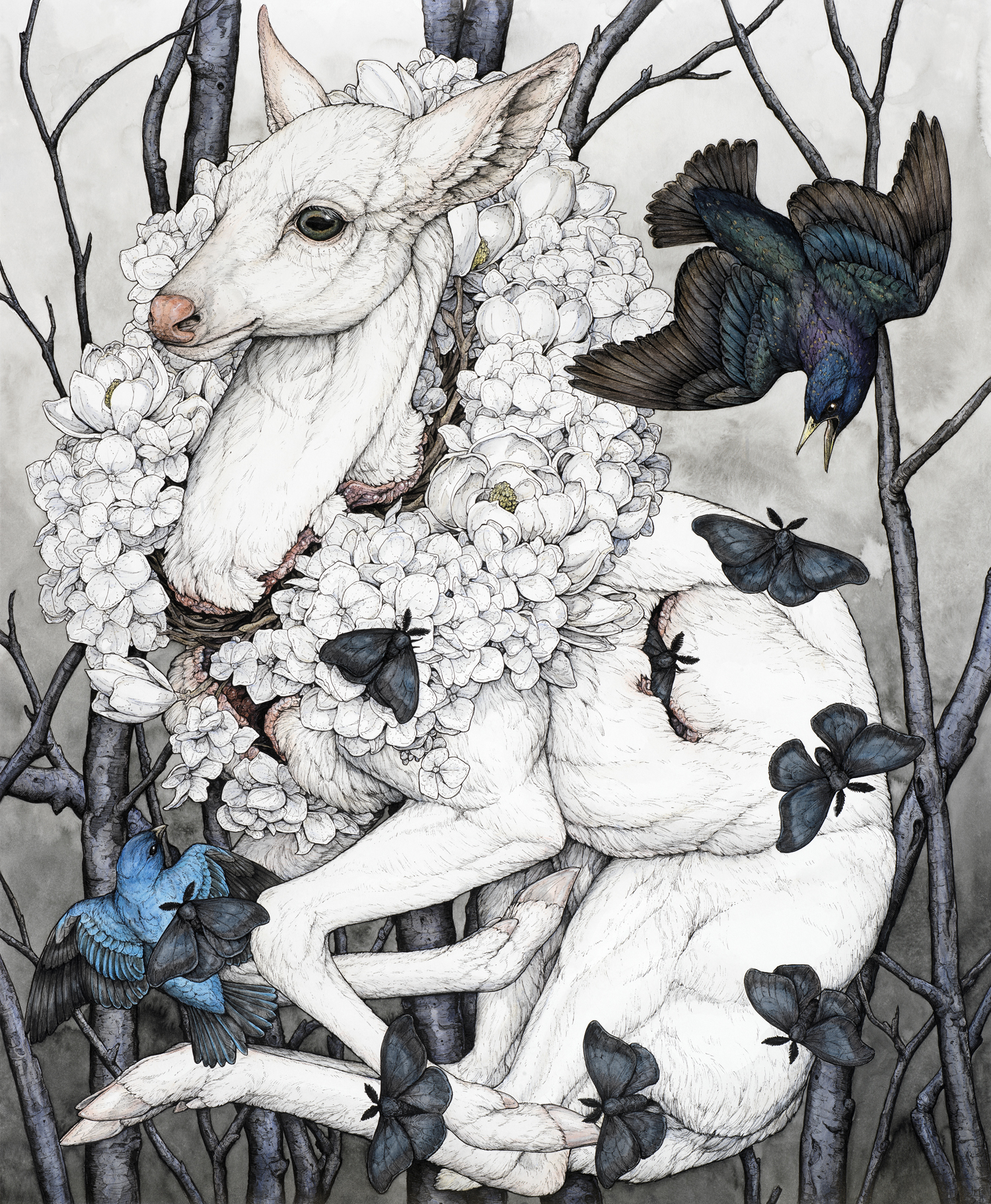 Wildlife Intertwine in Finely Rendered Mythological Worlds by Lauren Marx