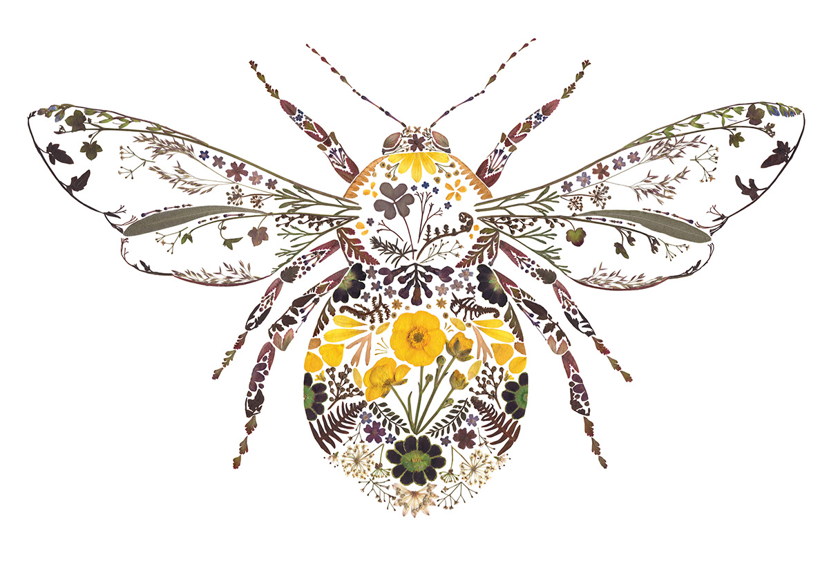 All the beauty of fauna in compositions by Artist Helen Ahpornsiri