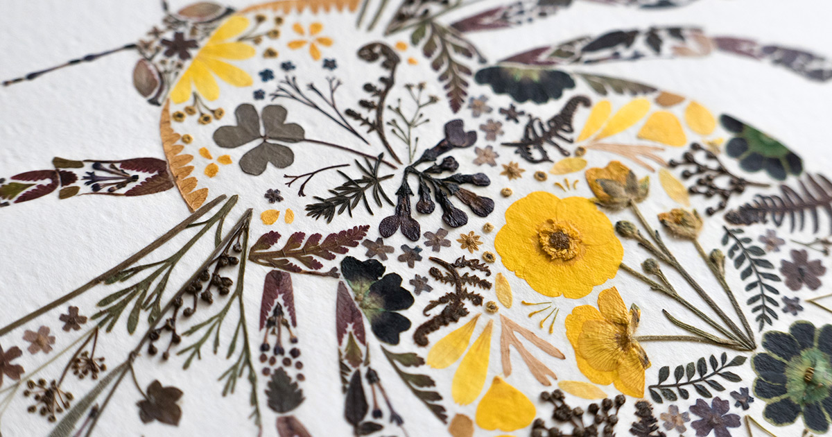Dried Botanics Pressed into Delicate Fauna Compositions by Artist Helen Ahpornsiri