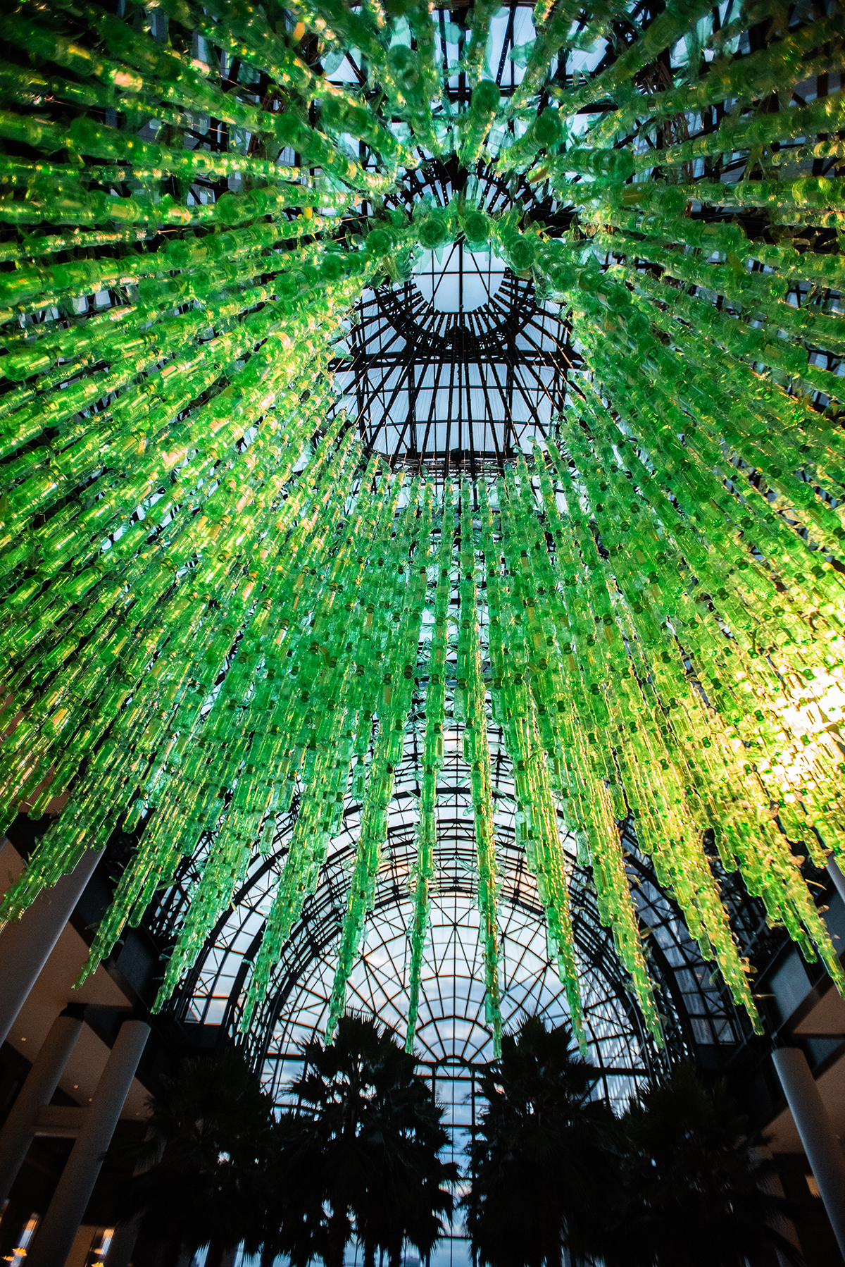 Thousands of Plastic Bottles Are Suspended in Green Tendrils in Artist Jean Shin's Latest Installation