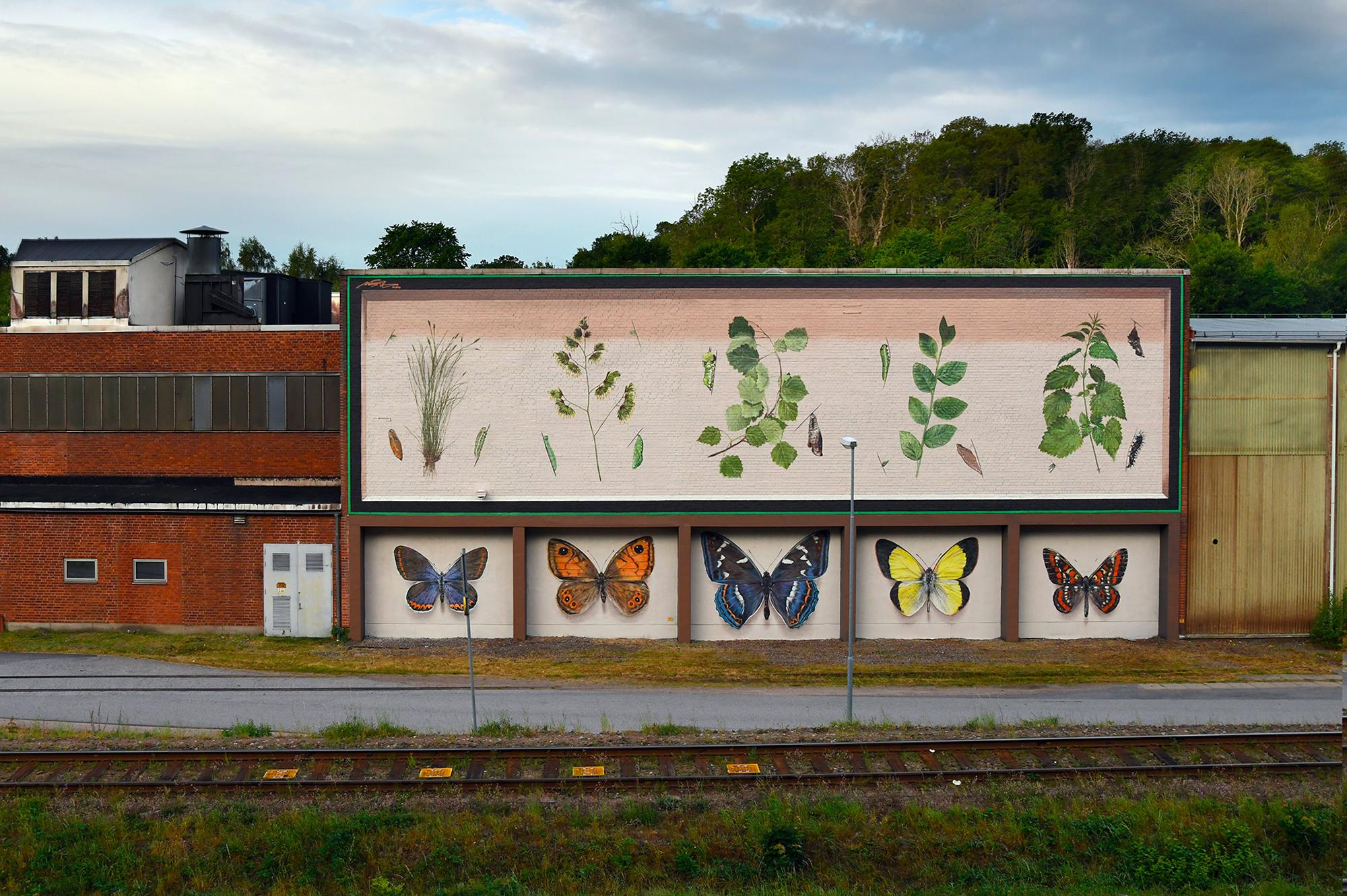 Murales Trompe L'oeil racchiudono enormi farfalle in scatole in stile vintage di Mantra