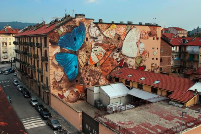 Mantra's Trompe L'oeil Murals Encase Enormous Butterflies in Vintage-Style Boxes