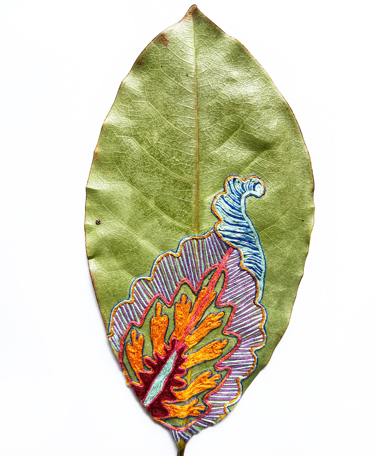 leaves, leaf embroidery, Hillary Waters Fayle, nature crafts, sewing crafts,  DMC thread, needle and thread, blah to TADA
