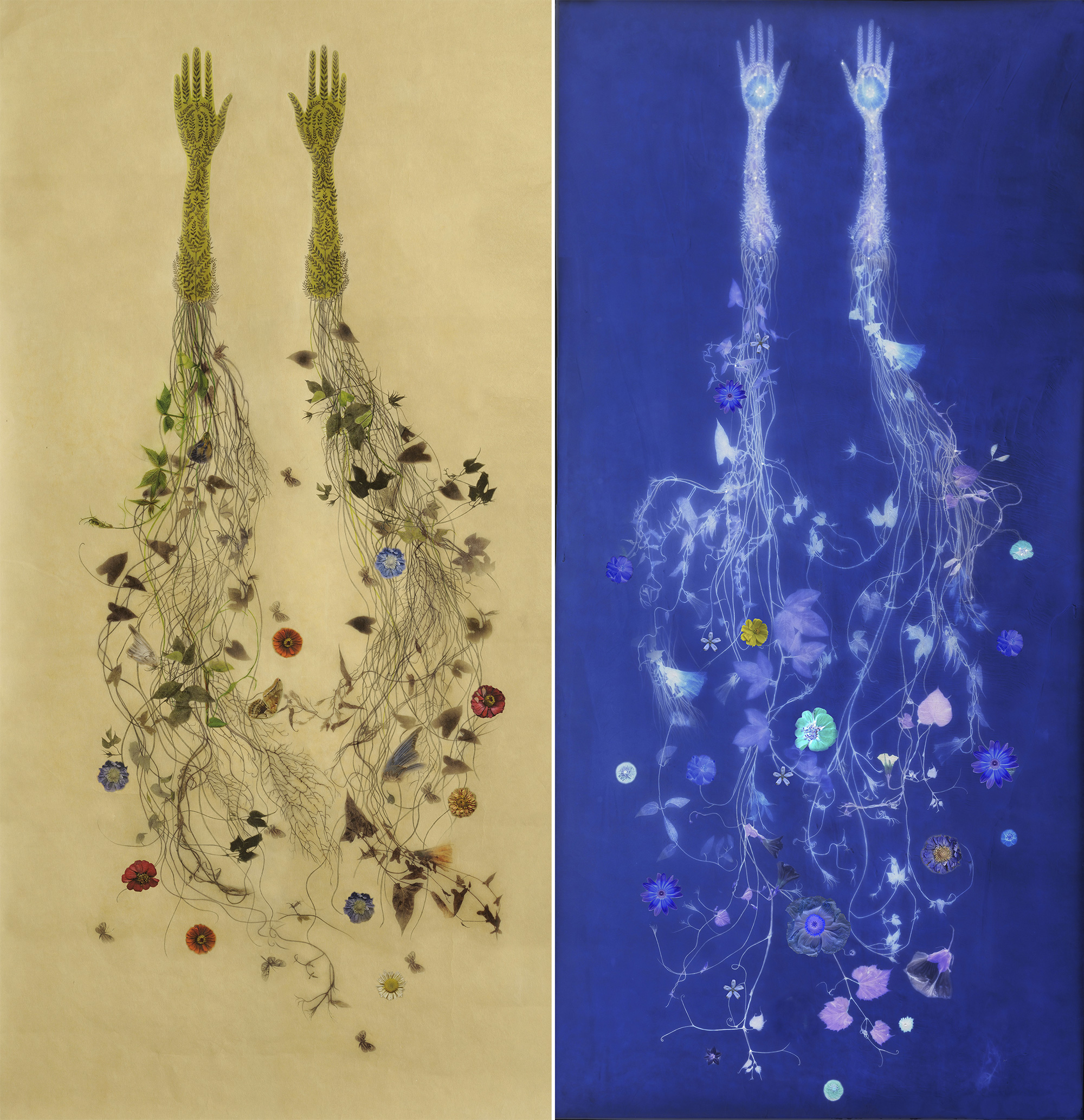 Plants Embedded in Wax Sprout from Fragile Hands in Memory-Infused Works by Valerie Hammond