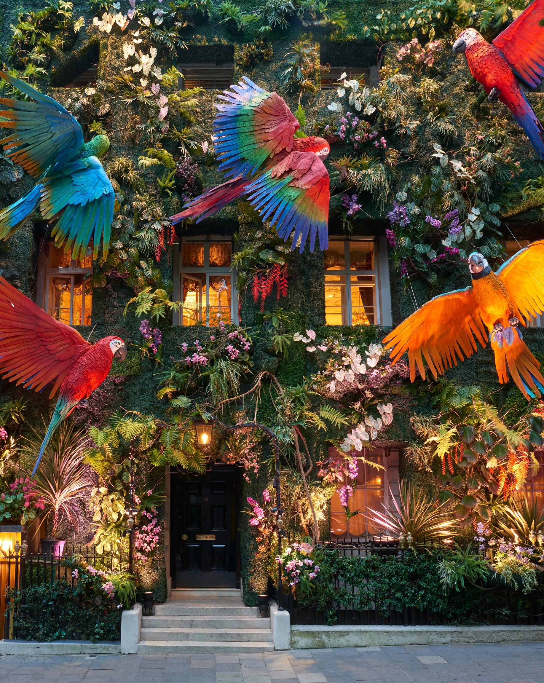 A Verdant Rainforest Lush with Plants and Giant Macaws Blankets Annabel's Facade in London